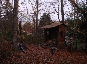 Our woods chopping wood late autumn
