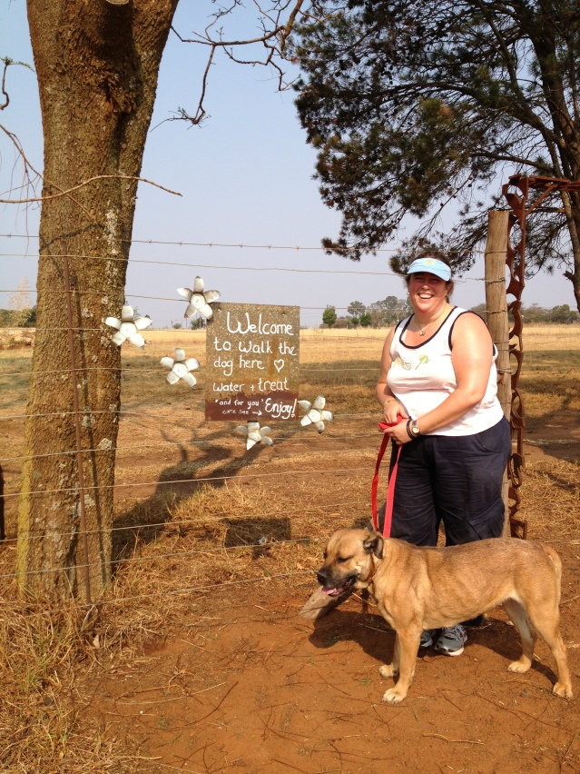expat life Pretoria volunteering in South Africa