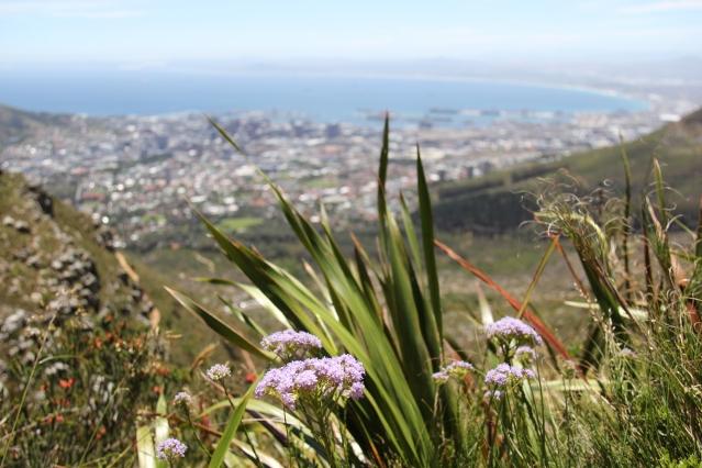 expat life Pretoria South Africa travel Cape Town